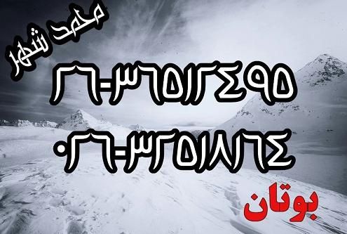 نمایندگی بوتان در محمد شهر